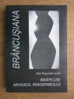 Ion Pogorilovschi - Brancusi, apogeul imaginarului
