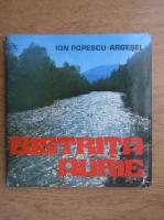Ion Popescu Argesel - Bistrita Aurie