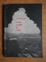 Ion Rahoveanu - Intre cetati si rauri