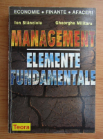 Ion Stancioiu - Management. Elemente fundamentale