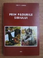 Ion V. Lungu - Prin padurile Sibiului