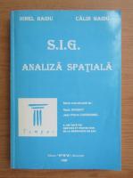 Anticariat: Ionel Haidu - S. I. G. Analiza spatiala