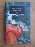 Ionel Teodoreanu - La Medeleni (volumul 3)