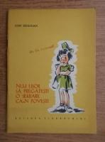Iosif Sebastian - Nu-i usor sa pregatesti o serbare ca-n povesti