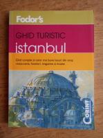 Istanbul. Ghid turistic al celor mai bune locuri din oras: restaurante, hoteluri, magazine si muzee