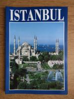 Anticariat: Istanbul. Ghid turistic