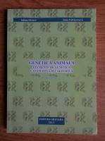 Anticariat: Iuliana Neagu - Genetica animala. Elemente de genetica cantitativa si calitativa