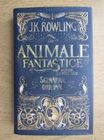 J. K. Rowling - Animalele fantastice si unde le poti gasi. Scenariul original