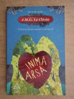 J. M. G. Le Clezio - Inima arsa si alte romante