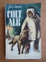 Jack London - Colt alb (Ed. Tineretului)