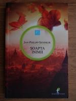 Jan Philipp Sendker - Soapta inimii