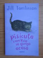 Anticariat: Jill Tomlinson - Pisicuta care voia sa ajunga acasa