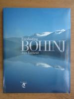 Anticariat: Joco Znidarsic - Everlasting Bohinj