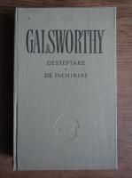 Anticariat: John Galsworthy - Desteptare. De inchiriat