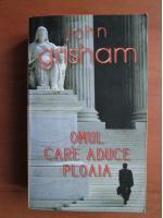 Anticariat: John Grisham - Omul care aduce ploaia