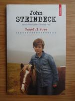 John Steinbeck - Poneiul rosu