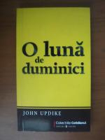 John Updike - O luna de duminici (Cotidianul)