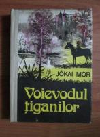 Jokai Mor - Voievodul tiganilor (coperti cartonate)