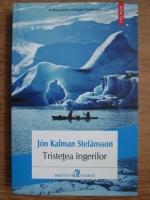 Jon Kalman Stefansson - Tristetea ingerilor