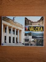Judetul Valcea (monografie)