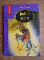 Anticariat: Jules Verne - Indiile negre