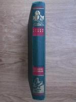 Jules Verne - Sfinxul ghetarilor