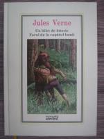 Anticariat: Jules Verne - Un bilet de loterie. Farul de la capatul lumii (Nr. 9)