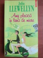 Anticariat: Julia Llewellyn - Amy pleaca in luna de miere