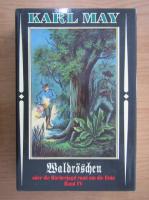 Karl May - Waldroschen oder die Racherjagd rund um die Erde, Band 4