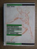 Kurt Tittel - Beschreibende und funktionelle Anatomie des Menschen