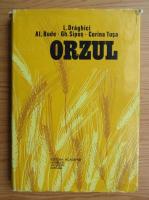 L. Draghici - Orzul