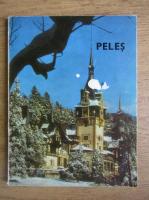 Anticariat: Le musee Peles (franceza)