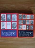Leon Levitchi - Istoria literaturii engleze si americane (2 volume)