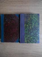 Leon Tolstoi - Ana Karenina (2 volume)