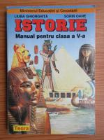 Liuba Ghiorghita, Sorin Oane - Istorie. Manual pentru clasa a V-a (2001)