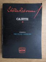 Liviu Rebreanu - Caiete (volumul 1)