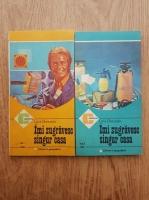 Anticariat: Luca Gherasim - Imi zugravesc singur casa (2 volume)