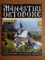 Anticariat: Manastiri Ortodoxe (nr. 58, 2010)
