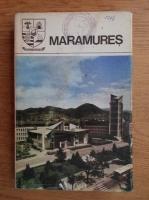 Maramures. Monografie (Judetele patriei)