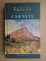Marcel Proust - Carnete