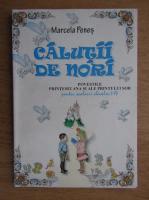 Marcela Penes - Calutii de nori, povestile printesei Ana si ale perintului Sor