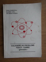 Marcela Popa - Culegere de probleme fizica-chimie