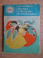 Mari Ann Drobota - Cultura citricelor in gospodarie