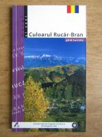 Anticariat: Mariana Pascaru - Culoarul Rucar-Bran. Ghid turistic