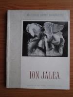 Marin Mihalache - Ion Jalea