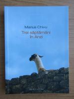 Marius Chivu - Trei saptamani in Anzi