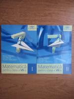 Anticariat: Marius Perianu - Matematica pentru clasa a VII-a (2 volume)