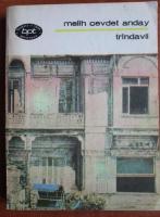 Melih Cevdet Anday - Trandavii
