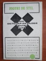 Mic dictionar antologie pentru elevi