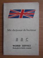 Anticariat: Mic dictionar de buzunar